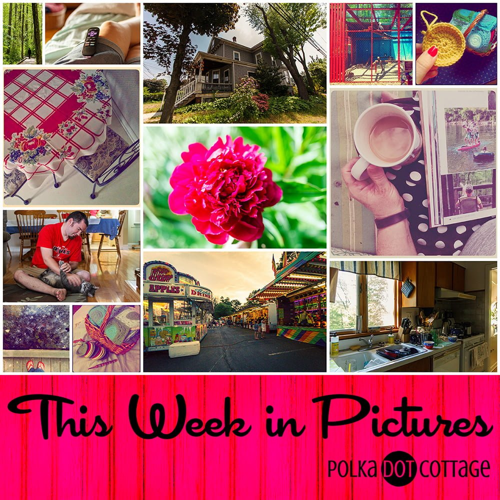 A weekly roundup of the images I took for my daily Project 365, as well as the slice-of-life things I posted on Instagram.