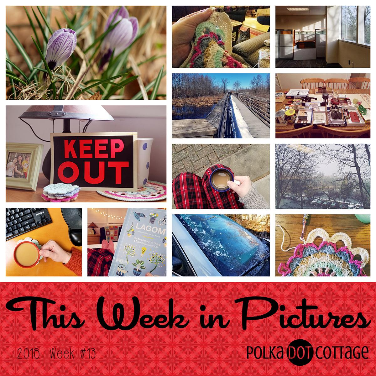 This Week in Pictures, Week 13, 2018